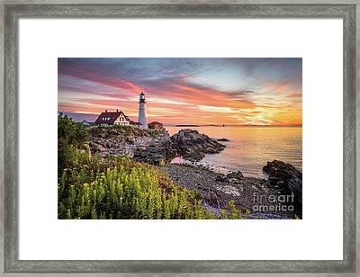 Colors Of Summer Framed Print by Benjamin Williamson