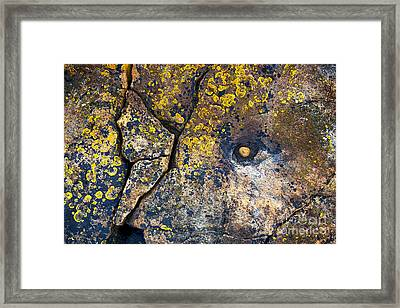 Colors Of The Coast Framed Print by Tim Gainey
