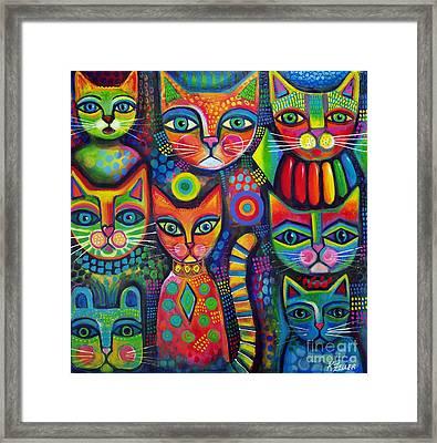 Colourful Cats Framed Print by Karin Zeller