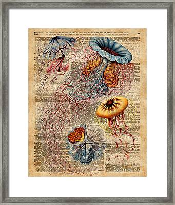 Colourful Jellyfish Marine Animals Illustration Vintage Dictionary Book Page,discomedusae Framed Print by Jacob Kuch