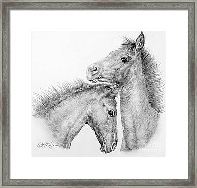 Coltish Characters Framed Print by Roy Anthony Kaelin