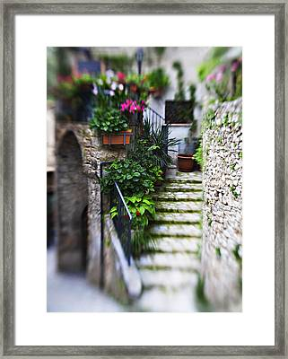Coming Home Framed Print by Marilyn Hunt