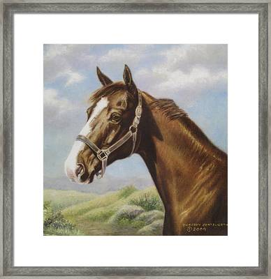 Commission Chestnut Horse Framed Print by Dorothy Coatsworth