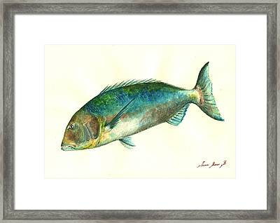 Common Dentex Fish Painting Framed Print by Juan  Bosco