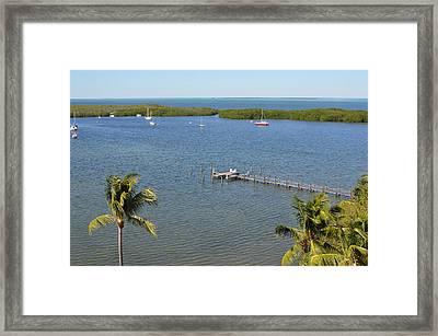 Community Harbor Framed Print by Tammy Mutka