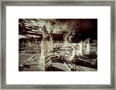 Company Of Angels Framed Print by Wayne Sherriff