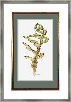 Compass Plant, Fall Framed Print by Catherine Twomey