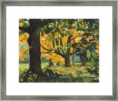 Concord Fall Trees Framed Print by Claire Gagnon