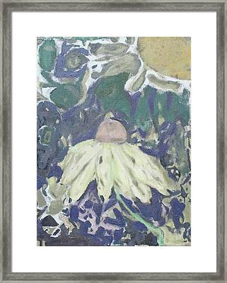 Coneflower Abstract Framed Print by Sarah Pepper