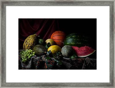 Confictio Framed Print by Zdenek Sindelar