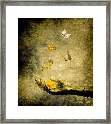 Connect Framed Print by Jacky Gerritsen