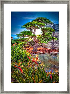 Consciousness Waves And Then Matters Framed Print by TC Morgan