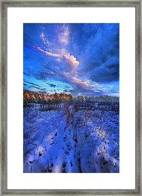 Cool Blue North Framed Print by Phil Koch