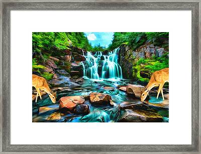 Cool Drink Framed Print by Anthony Caruso