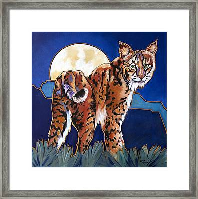 Cool Dude Framed Print by Rose Collins