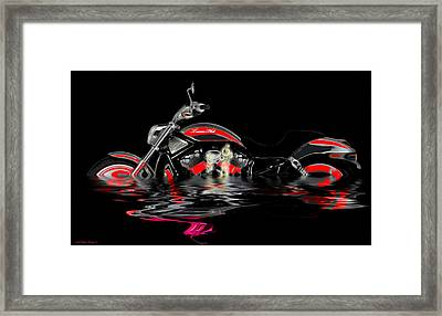 Cool It  Framed Print by Wayne Bonney