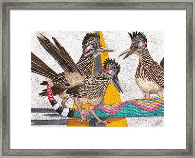 Coontail Framed Print by Catherine G McElroy
