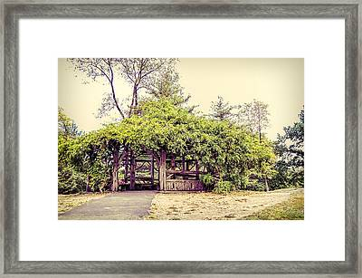 Cop Cot - Central Park Framed Print by Paulette B Wright