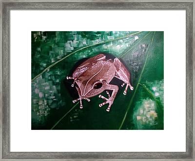 Coqui, Coqui Framed Print by Olga Malave-Radi