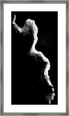 Coral Edge Framed Print by Jean Noren