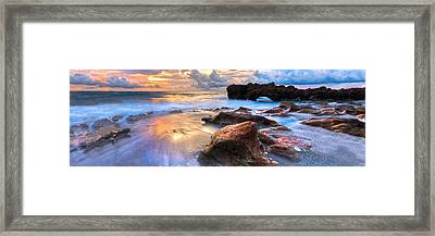Coral Garden Panorama Framed Print by Debra and Dave Vanderlaan