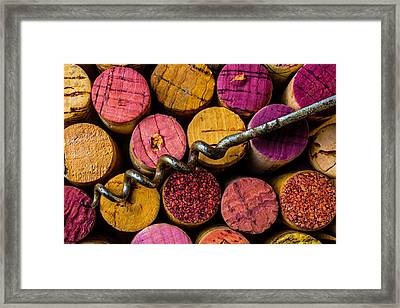 Corkscrew Close Up Framed Print by Garry Gay
