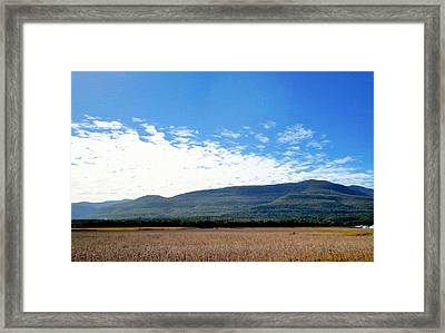 Corn Farm In Catskill 2 Framed Print by Lanjee Chee