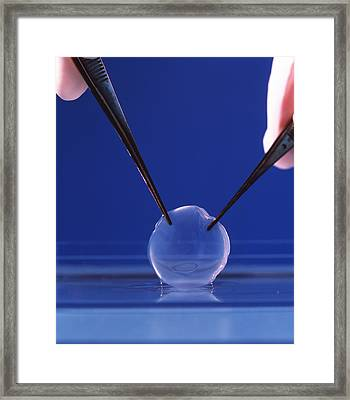 Corneal Strip Framed Print by Mauro Fermariello