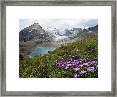 Corno Gries, Switzerland Framed Print by Vito Guarino