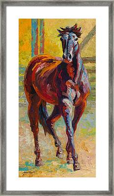 Corral Boss - Mustang Framed Print by Marion Rose