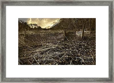 Corrugated Tin Pen Framed Print by Meirion Matthias