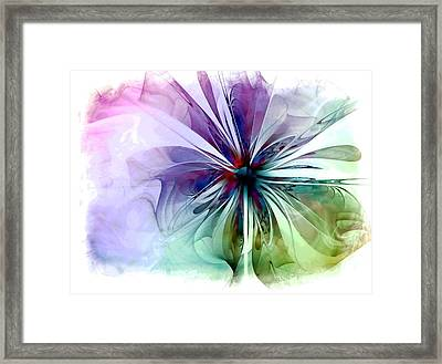 Corsage Framed Print by Amanda Moore