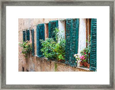 Cortona Window Flowers Framed Print by David Letts