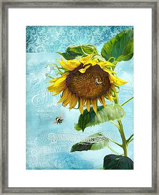 Cottage Garden Sunflower - Everlastings Seeds N Flowers Framed Print by Audrey Jeanne Roberts