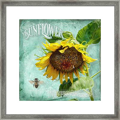 Cottage Garden - Sunflower Standing Tall Framed Print by Audrey Jeanne Roberts
