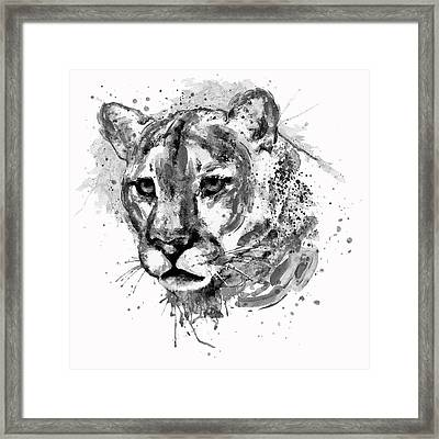 Cougar Head Black And White Framed Print by Marian Voicu