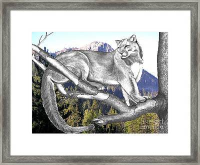 Cougar Mountain Framed Print by Russ  Smith