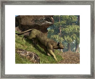 Cougar Pass Framed Print by Daniel Eskridge