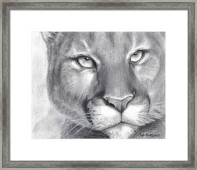Cougar Spirit Framed Print by Carla Kurt