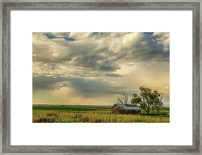 Country Air Framed Print by James BO Insogna
