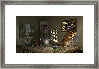 Country Cat Framed Print by Mary Almond