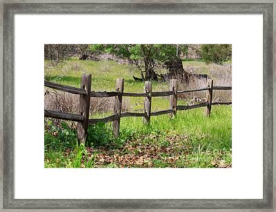 Country Fence Framed Print by Carol Groenen