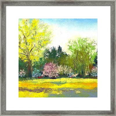 Country Garden Framed Print by David Patterson