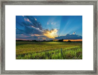 Country Life Framed Print by Marvin Spates