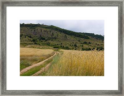 Country Side Framed Print by Boyan Dimitrov