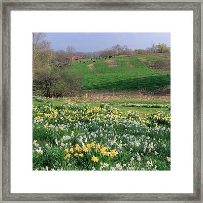 Country Spring Square Framed Print by Bill Wakeley