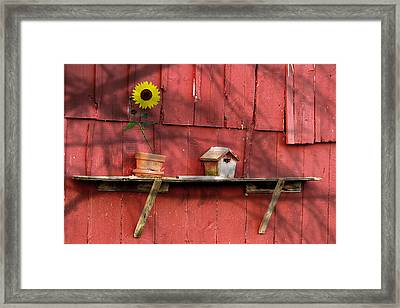 Country Still Life II Framed Print by Tom Mc Nemar