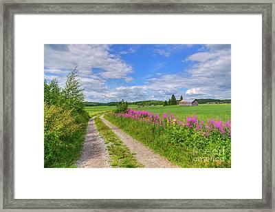Countryside In Finland Framed Print by Veikko Suikkanen