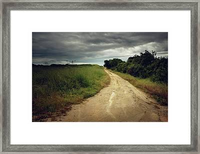 Countryside Trail Framed Print by Carlos Caetano