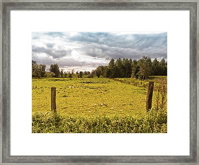 Countryside Framed Print by Wim Lanclus